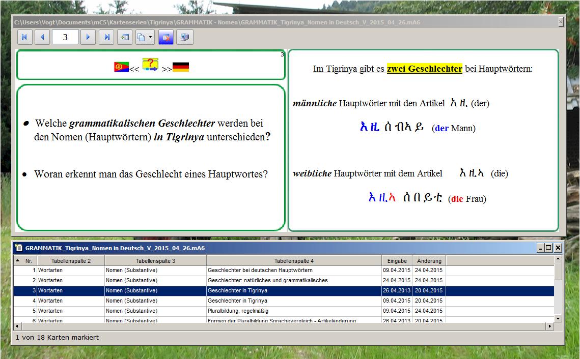Grammatik Deutsch Tigrinya Nomen